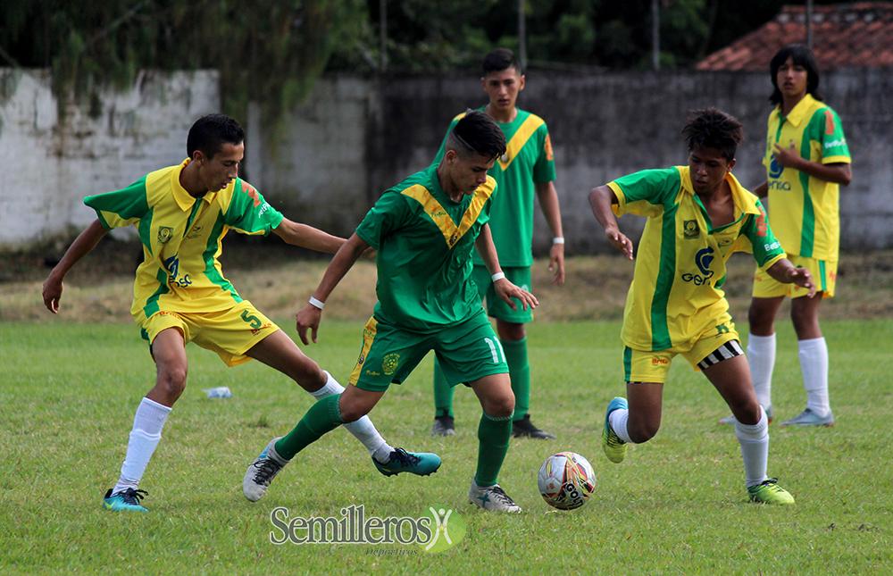 Zonal Semifinal Infantil - Estadio La Tebaida - Fútbol Infantil - 2018 (29)