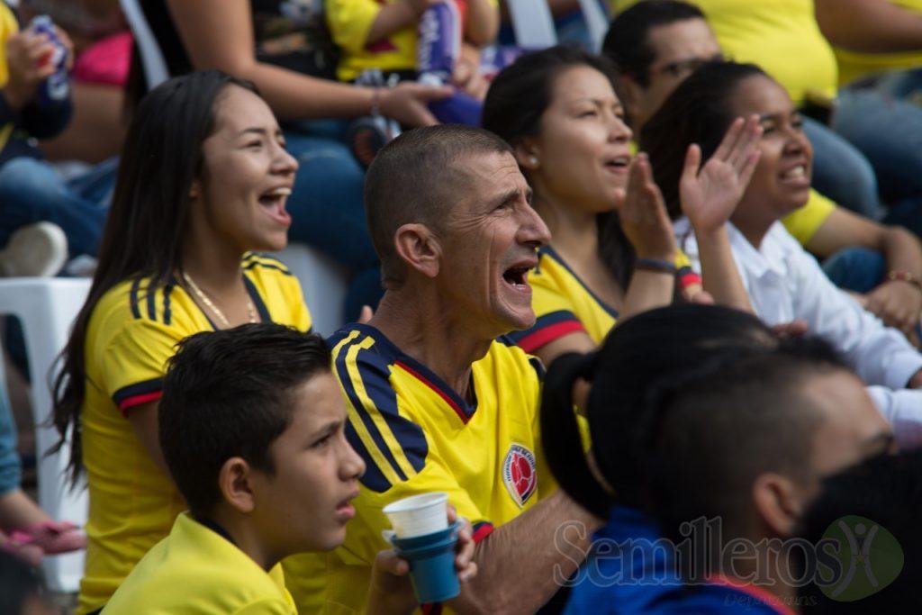 Hincha colombiano
